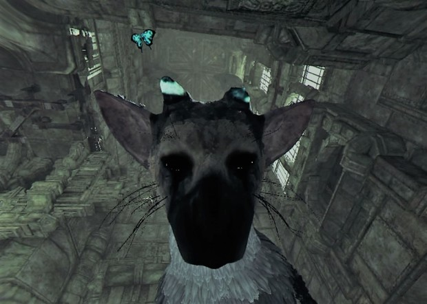 The Last Guardian™ VR DEMO_20180106195011